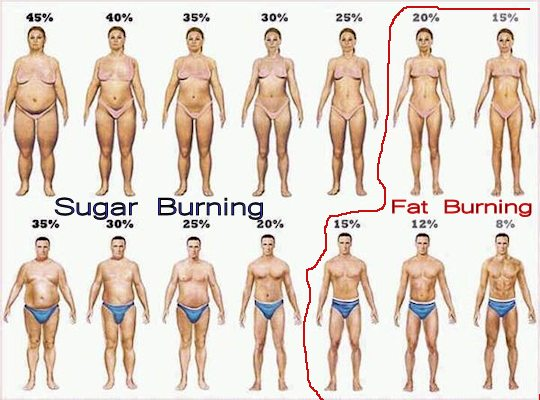 Be a Fat Burner